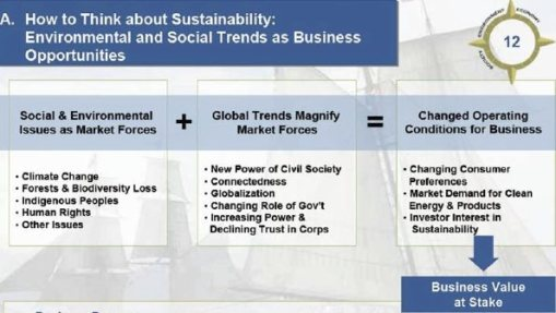 business_sustainability_practices_treehugger