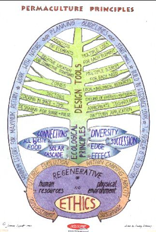 permaculture_poster_-_holocenenet