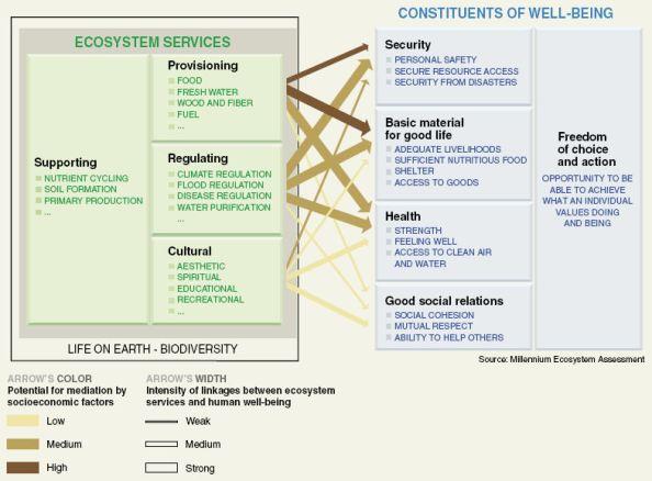 ecosystem_servicesMA