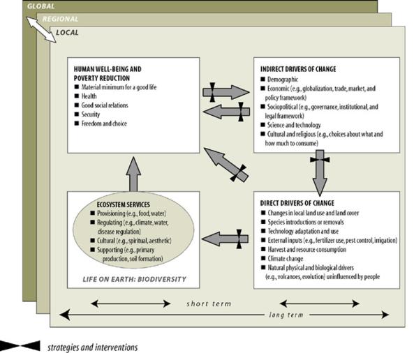 MA-conceptual_framework