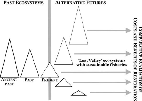 Diagram-illustrating-the-concept-of-sustainable-fishing-of-restored-Lost-Valley_W640
