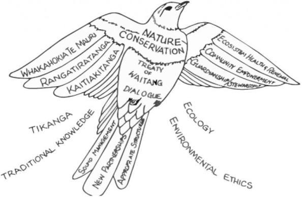 e-ko-conservation.jpg